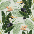 Birds of Paradise Wallpaper Mind the Gap WP20092