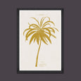 Mind the Gap La Coctier Coconut Tree Art Print FA12758