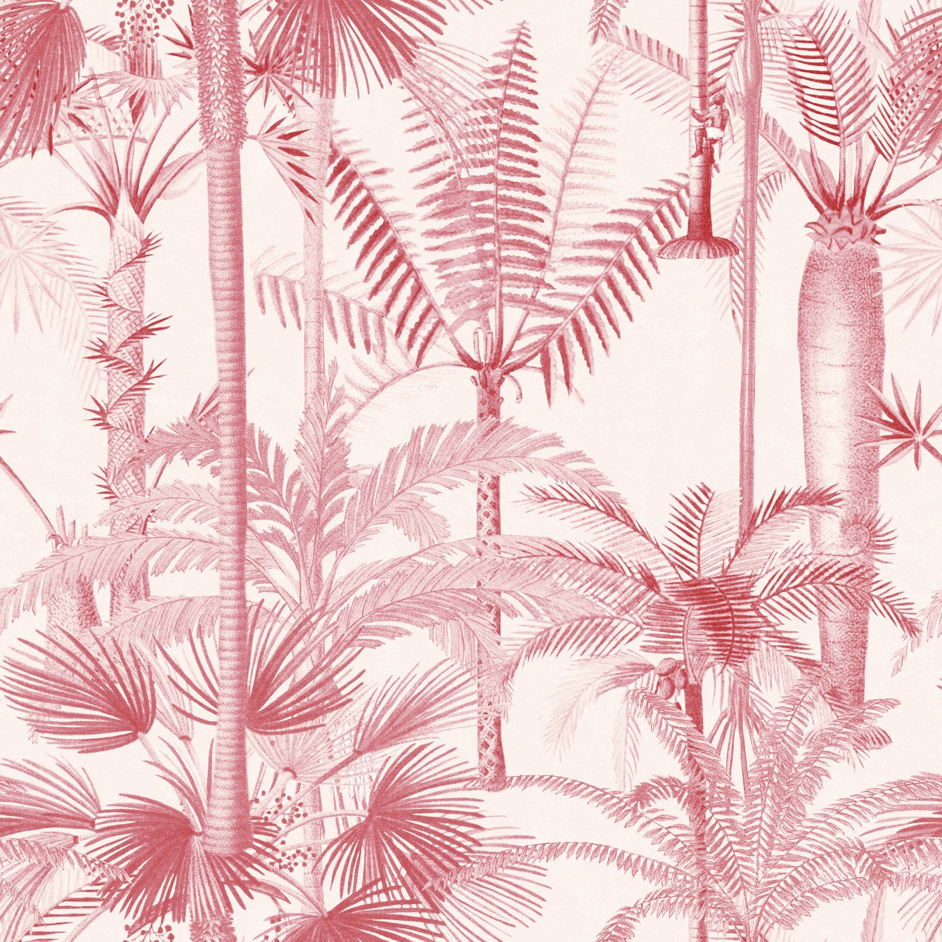 Mind the Gap Palmera Cubana Pink Wallpaper