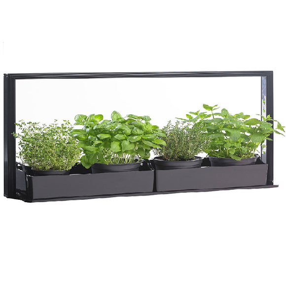 Led Grow Home Gardening