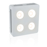 COB 4 Cree CXB 3070 800w - 3500K - led grow lights KingOfLeds