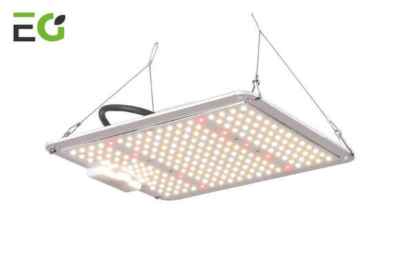 EasyGrow Lite-250 - led grow lights KingOfLeds