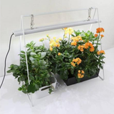 Parus Plant Light Lucis growkit for germination or grow - led grow lights KingOfLeds
