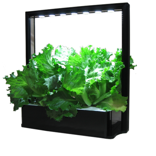 Indoor Gardening Farm M10 - led grow lights KingOfLeds
