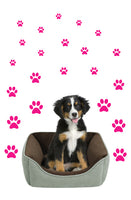 HOT PINK PAW PRINT STICKERS