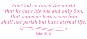 JOHN 3:16 RELIGIOUS WALL DECAL IN SOFT PINK