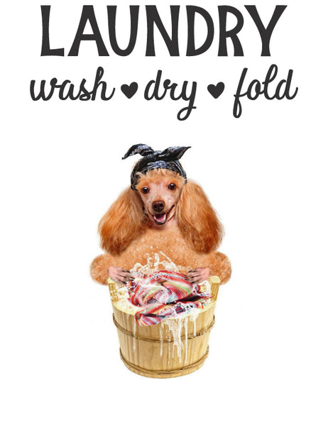 LAUNDRY WASH DRY FOLD WALL DECAL