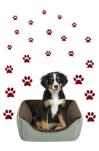 Load image into Gallery viewer, MAROON PAW PRINT STICKERS
