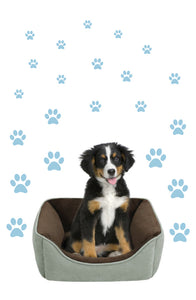 POWDER BLUE PAW PRINT STICKERS