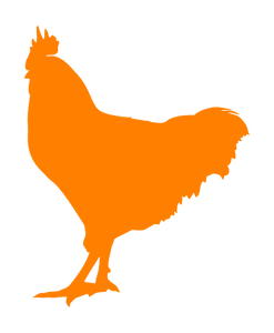 ROOSTER WALL DECAL IN ORANGE