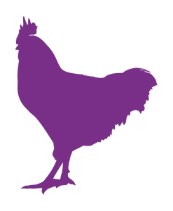 ROOSTER WALL DECAL IN PURPLE