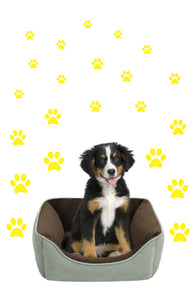YELLOW PAW PRINT STICKERS