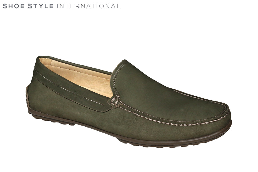 Anatomic Lucas Olive