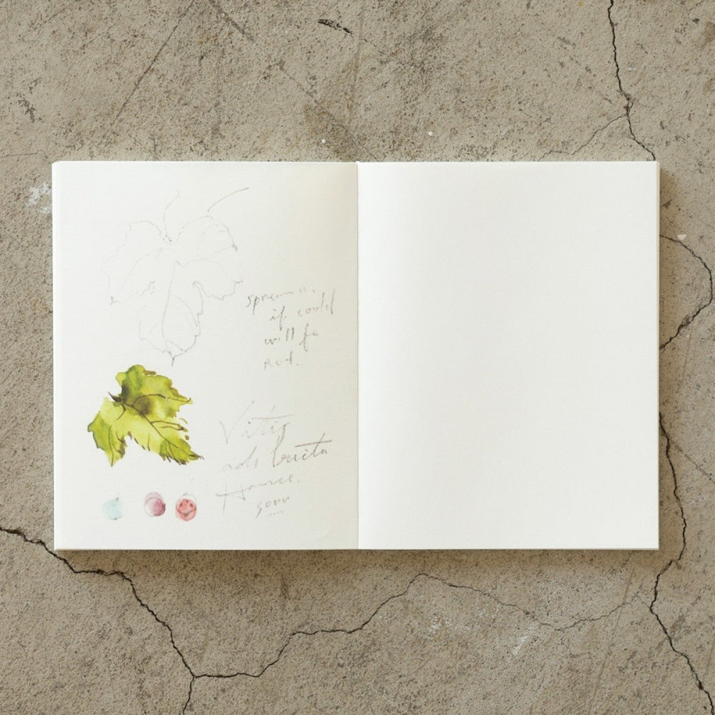 Traveler's Company/Midori MD Notebook Cotton - F0