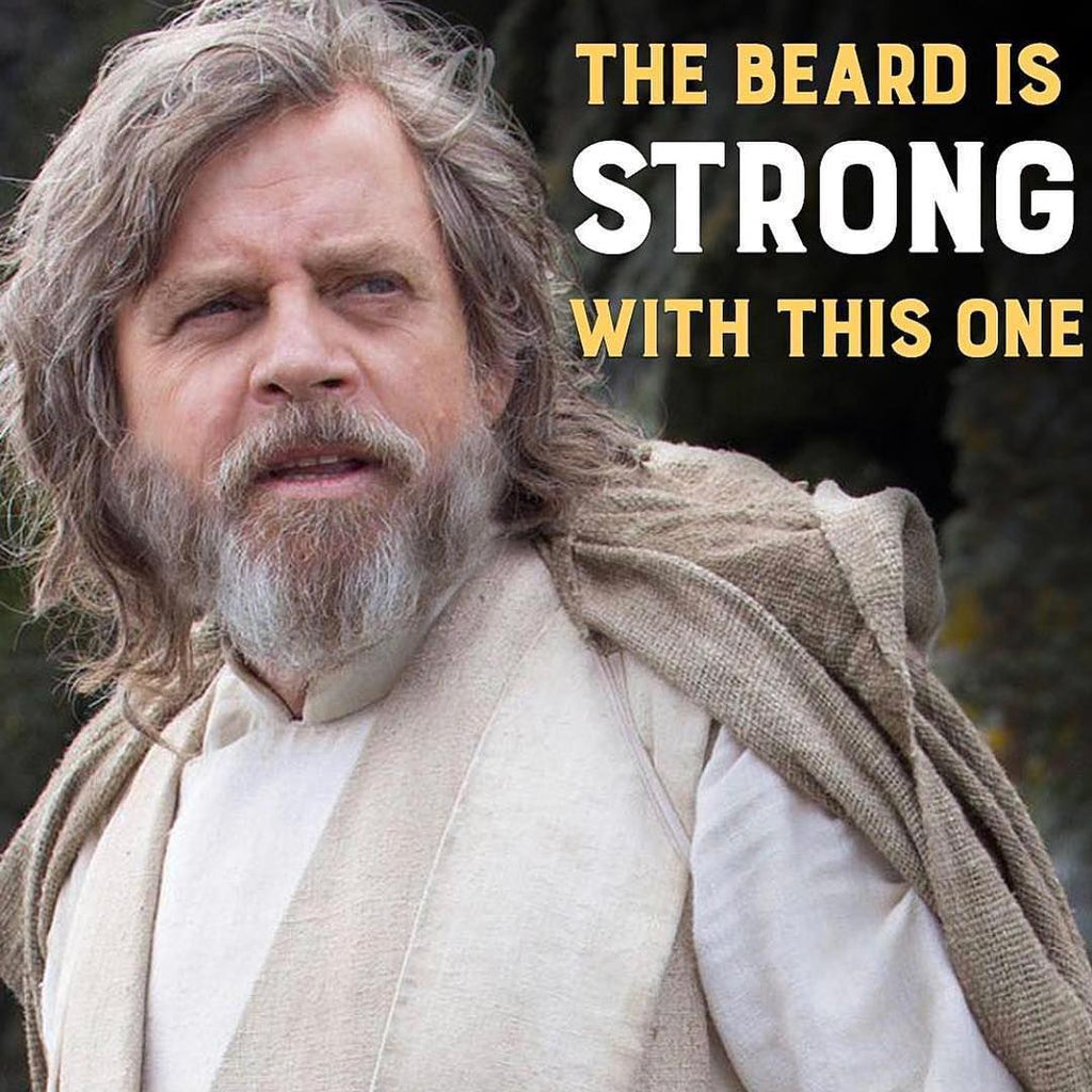 """Elderly bearded man with long hair staring into the distance with the caption """"the beard is strong with this one"""""""