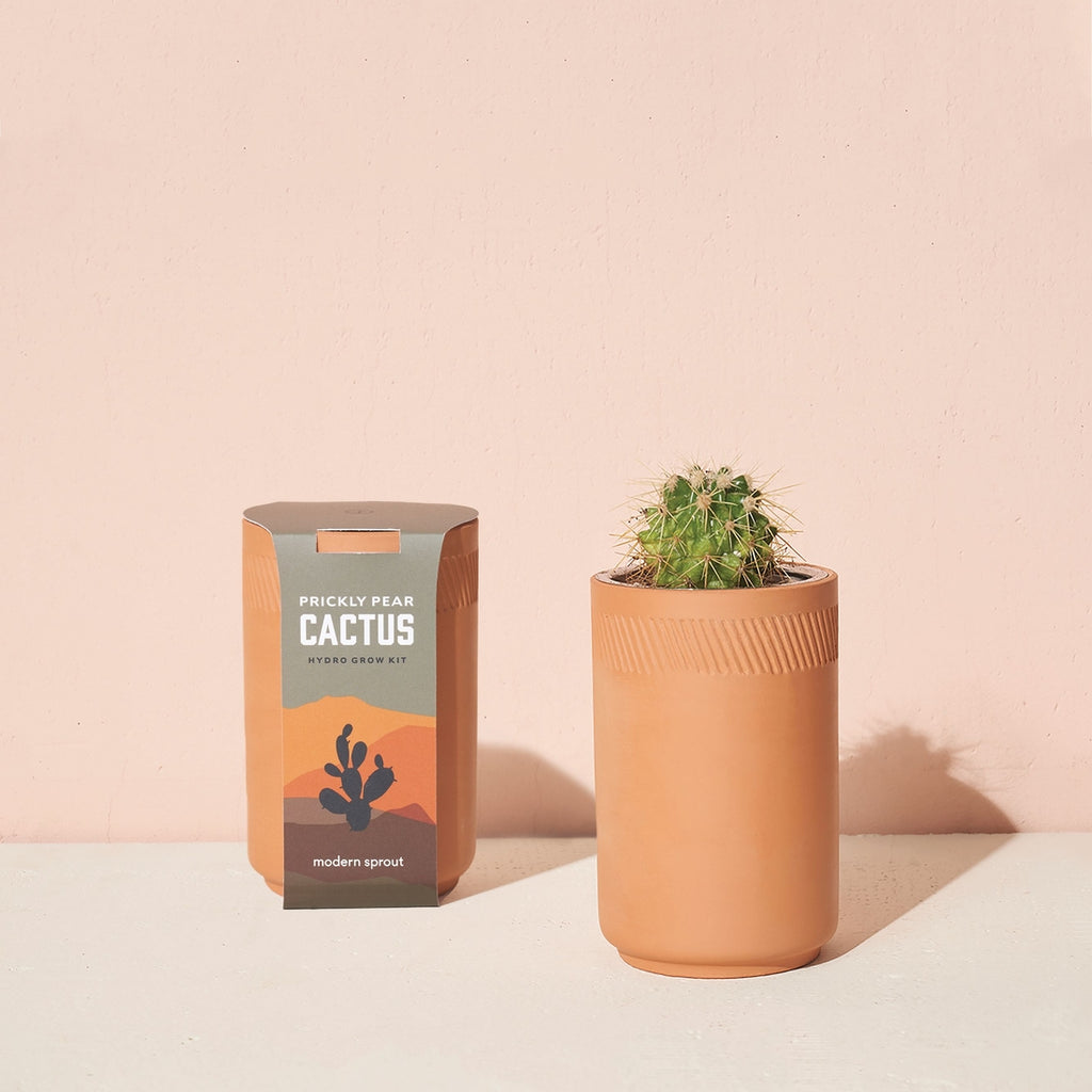 Terra Cotta Grow Kit