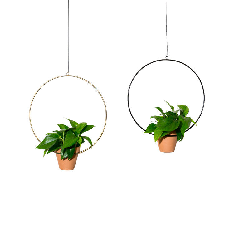 Large Hanging Circle Planter