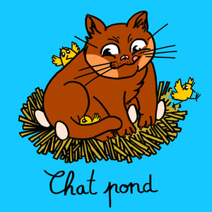 "Carte postale ""Chat pond"""