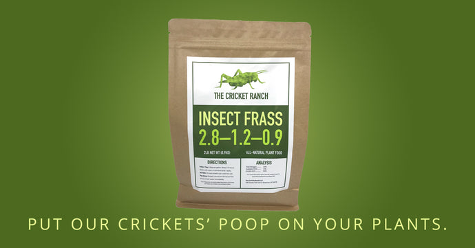 Now Launching Our Cricket Frass!