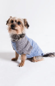 Z Supply Dog The Baseball Tee