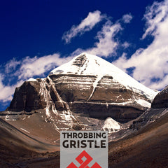 Throbbing Gristle - Part Two The Endless Not / TG Now - 2CD