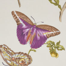 Load image into Gallery viewer, SCHUMACHER BAUDIN BUTTERFLY CHINTZ FABRIC 178722 / PURPLE