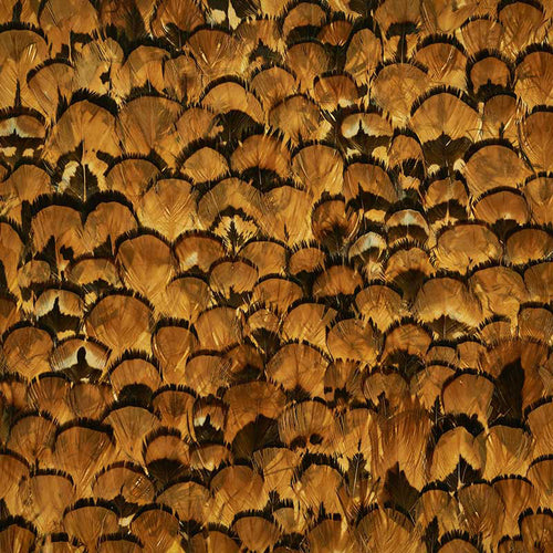 Schumacher Limonite Wallpaper 5008392 / Apricot