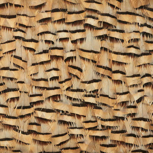 Schumacher Muscovite Wallpaper 5008401 / Cracker Khaki