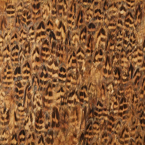 Schumacher Umber Wallpaper 5008403 / Daffod