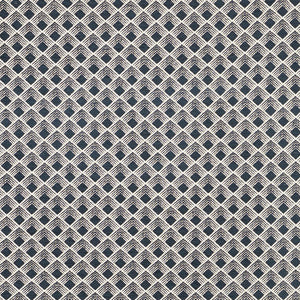 SCHUMACHER MORGAN FABRIC 71170 / ONYX