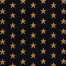 Load image into Gallery viewer, SCHUMACHER STAR EPINGLE FABRIC 77420 / BLACK