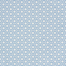 Load image into Gallery viewer, SCHUMACHER QUEEN B FABRIC / CHAMBRAY