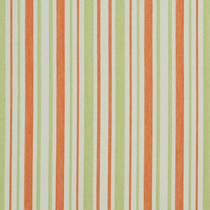 Essentials Outdoor Stain Resistant Upholstery Drapery Fabric Coral Lime / Catalina Stripe