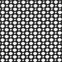 Load image into Gallery viewer, Schumacher Betwixt fabric /  Black / White