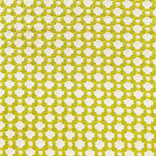 Load image into Gallery viewer, Schumacher Betwixt fabric /  Chartreuse/Ivory
