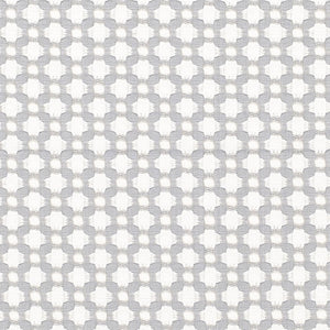 Schumacher Betwixt fabric / Zinc/Blanc