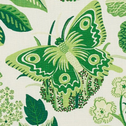 Schumacher exotic butterfly fabric /Leaf