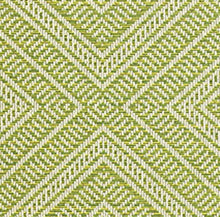 Load image into Gallery viewer, Schumacher Tortola fabric / Kiwi