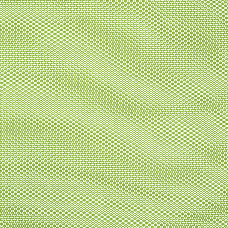 SCHUMACHER QUEEN B II INDOOR OUTDOOR FABRIC / GREEN
