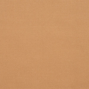 Essentials Indoor Outdoor Apricot Upholstery Fabric / Beach