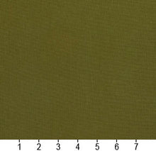 Load image into Gallery viewer, Essentials Cotton Duck Olive Upholstery Drapery Fabric / Moss