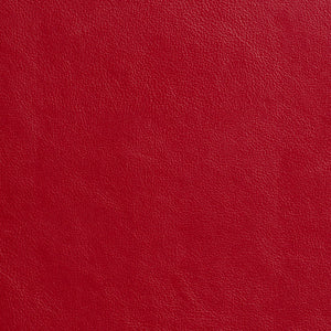 Essentials Recycled Genuine Leather Vinyl Red / Poppy