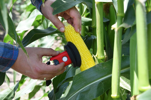 SCiO Corn Moisture Analyzer