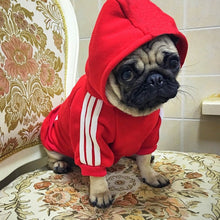 Load image into Gallery viewer, Fashion Dogs Hoodie For Small dogs