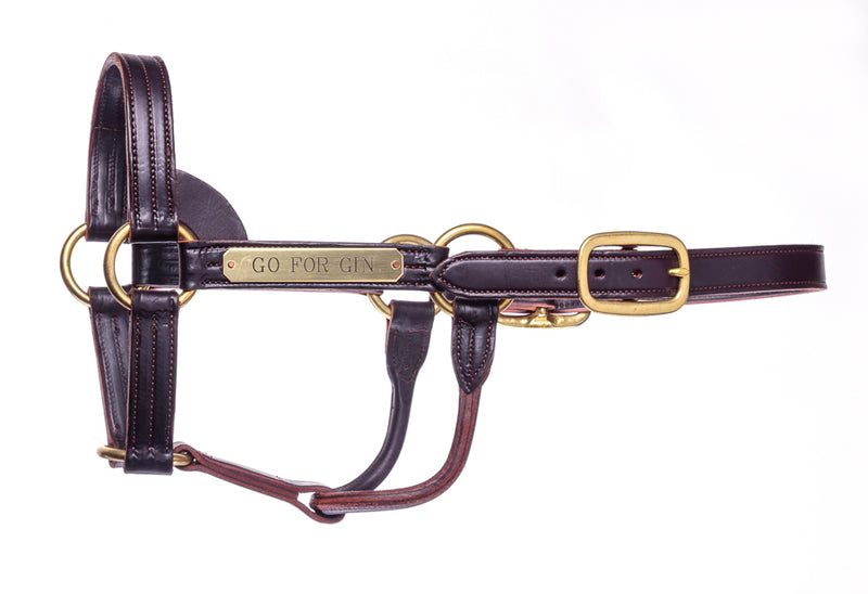 Halter- Go for Gin - Kentucky Horse Park
