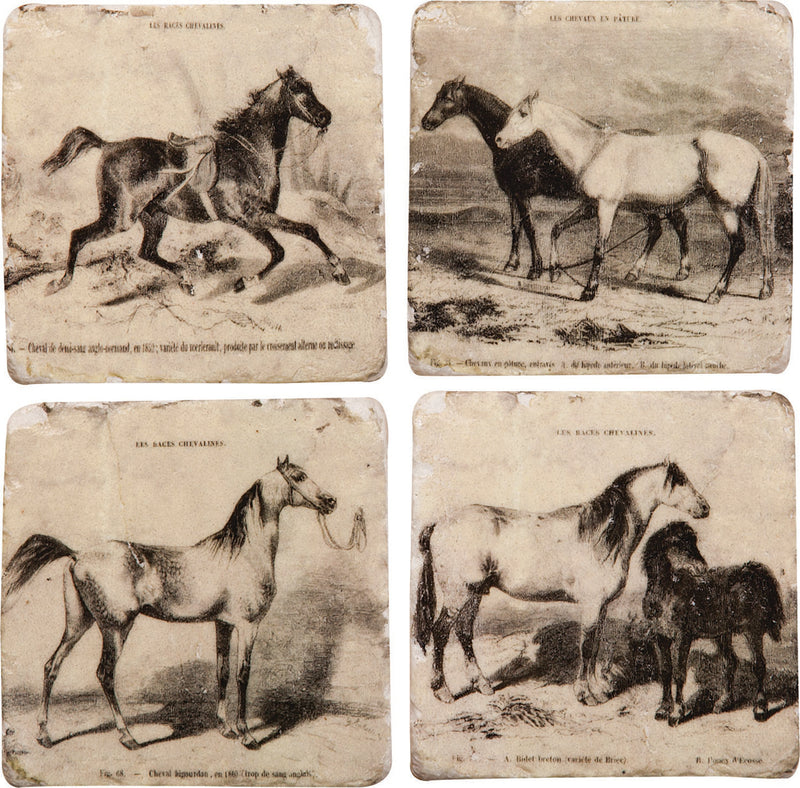 Painted Horses Coaster 4 Pack - Kentucky Horse Park