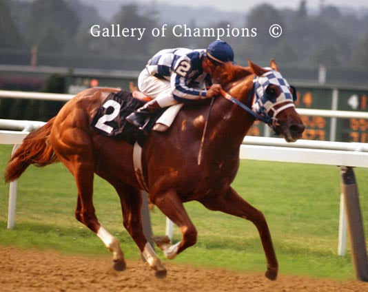 Secretariat 8 x 10 Belmont Finish - Kentucky Horse Park