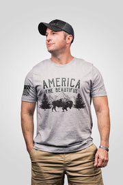 Seasonal Men's T-Shirt - America the Beautiful