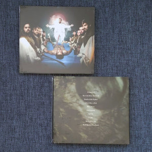 CAPTAIN AHAB 'the end of irony' cd / double 12""
