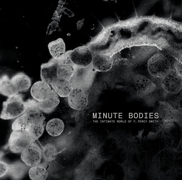 Tindersticks - Minute Bodies